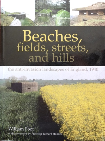 Image for Beaches, Fields, Streets and Hills